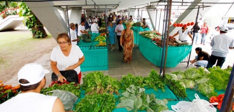Primeiro dia da Feira de Agricultura Familiar é sucesso