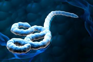 Suspeita de ebola em Caruaru